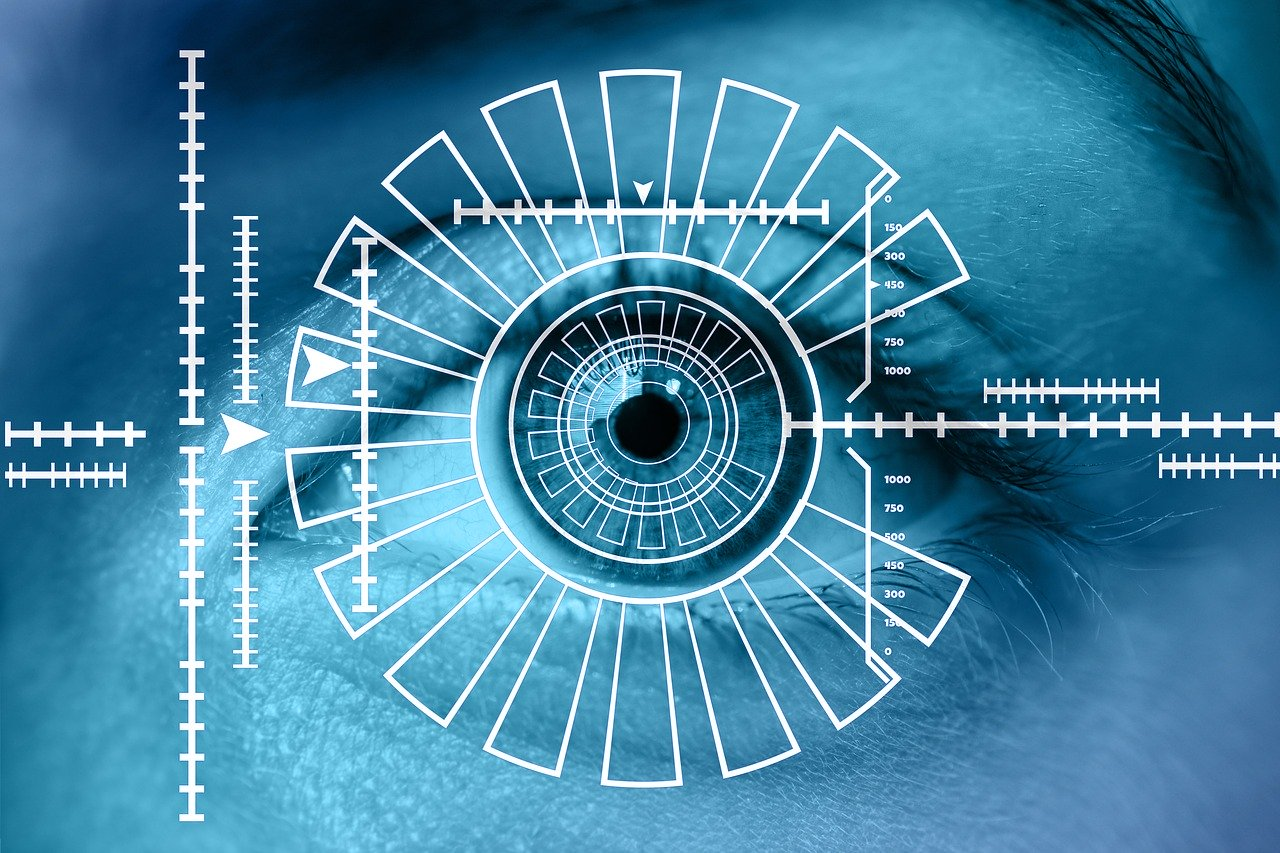 Securing Identities: Biometric Technologies and the Enactment of Human Bodily Differences